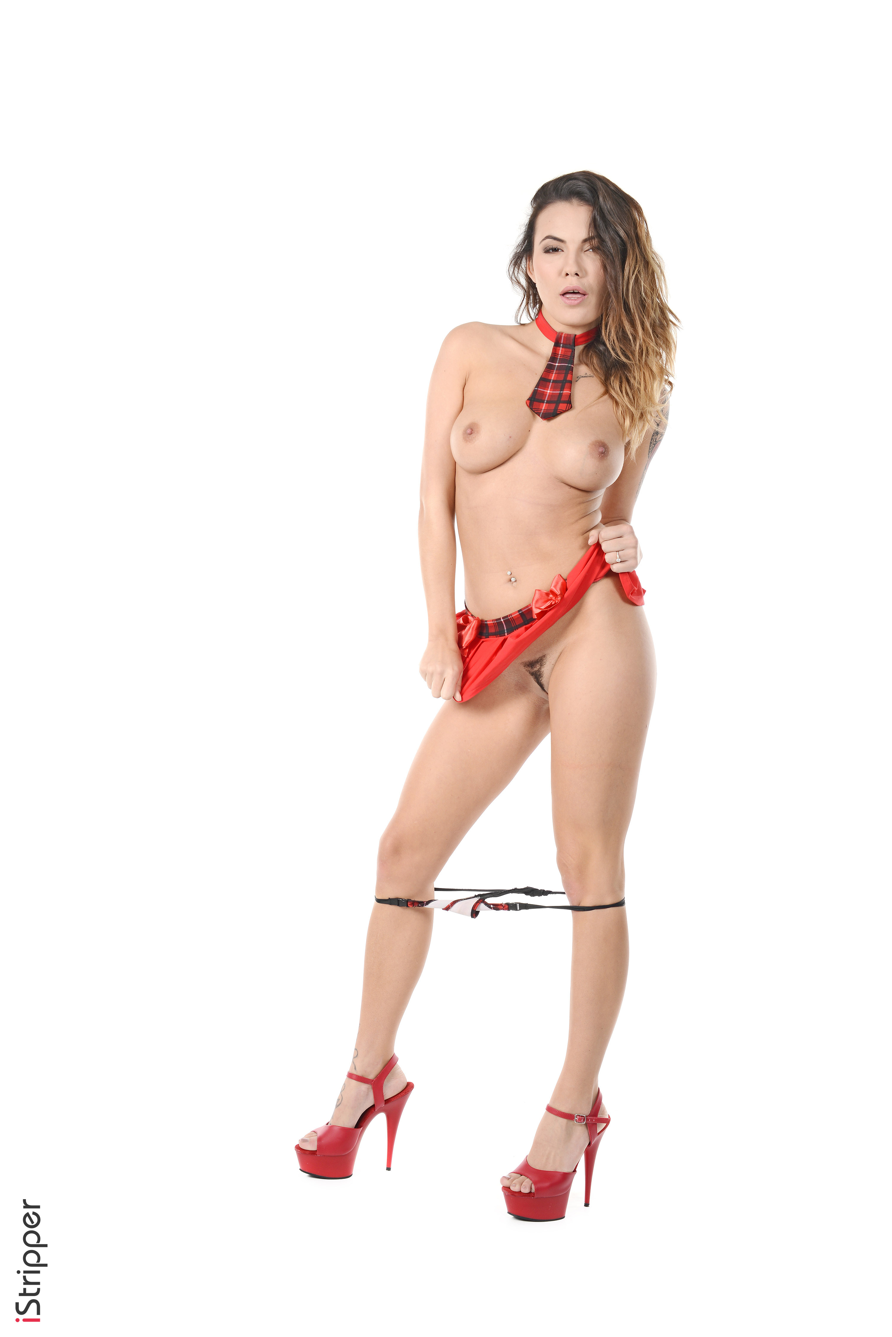 desktop stripper 2 frames